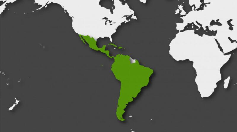 Mirada Multipolar | Propuestas para el orden mundial post-COVID19 ¿Y si nos organizamos?